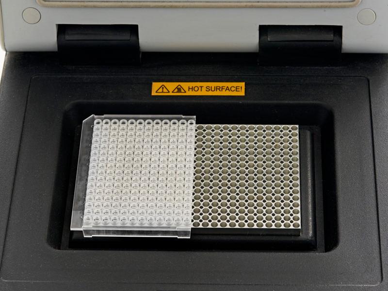 ff44c871b1 192 Well PCR   qPCR Plates