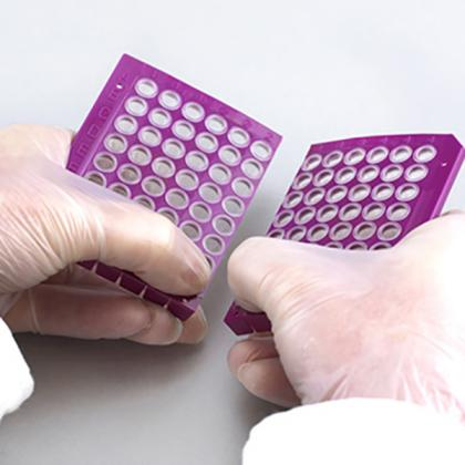 4ti-1000/P   FrameStar® Break-A-Way PCR Plate   Breaking Detail